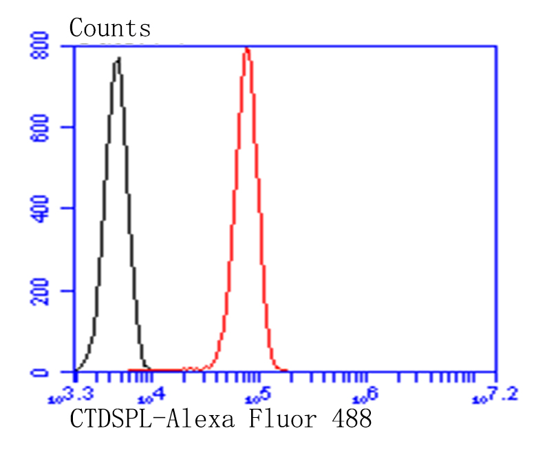 Flow cytometric analysis of HepG2 cells with CFTR antibody at 1/100 dilution (red) compared with an unlabelled control (cells without incubation with primary antibody; black). Alexa Fluor 488-conjugated goat anti-rabbit IgG was used as the secondary antibody.