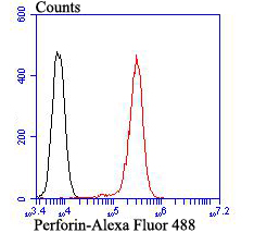 Flow cytometric analysis of Perforin was done on HepG2 cells. The cells were fixed, permeabilized and stained with Perforin antibody at 1/100 dilution (red) compared with an unlabelled control (cells without incubation with primary antibody; black). After incubation of the primary antibody on room temperature for an hour, the cells was stained with a Alexa Fluor™ 488-conjugated goat anti-rabbit IgG Secondary antibody at 1/500 dilution for 30 minutes.