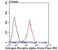 Flow cytometric analysis of Estrogen Receptor alpha was done on MCF-7 cells. The cells were fixed, permeabilized and stained with Estrogen Receptor alpha antibody at 1/100 dilution (red) compared with an unlabelled control (cells without incubation with primary antibody; black). After incubation of the primary antibody on room temperature for 1 hour, the cells was stained with a Alexa Fluor™ 488-conjugated goat anti-rabbit IgG Secondary antibody at 1/500 dilution for 30 minutes.