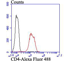 Flow cytometric analysis of CD4 was done on Hela cells. The cells were fixed, permeabilized and stained with CD4 antibody at 1/100 dilution (red) compared with an unlabelled control (cells without incubation with primary antibody; black). After incubation of the primary antibody on room temperature for an hour, the cells was stained with a Alexa Fluor™ 488-conjugated goat anti-rabbit IgG Secondary antibody at 1/500 dilution for 30 minutes.