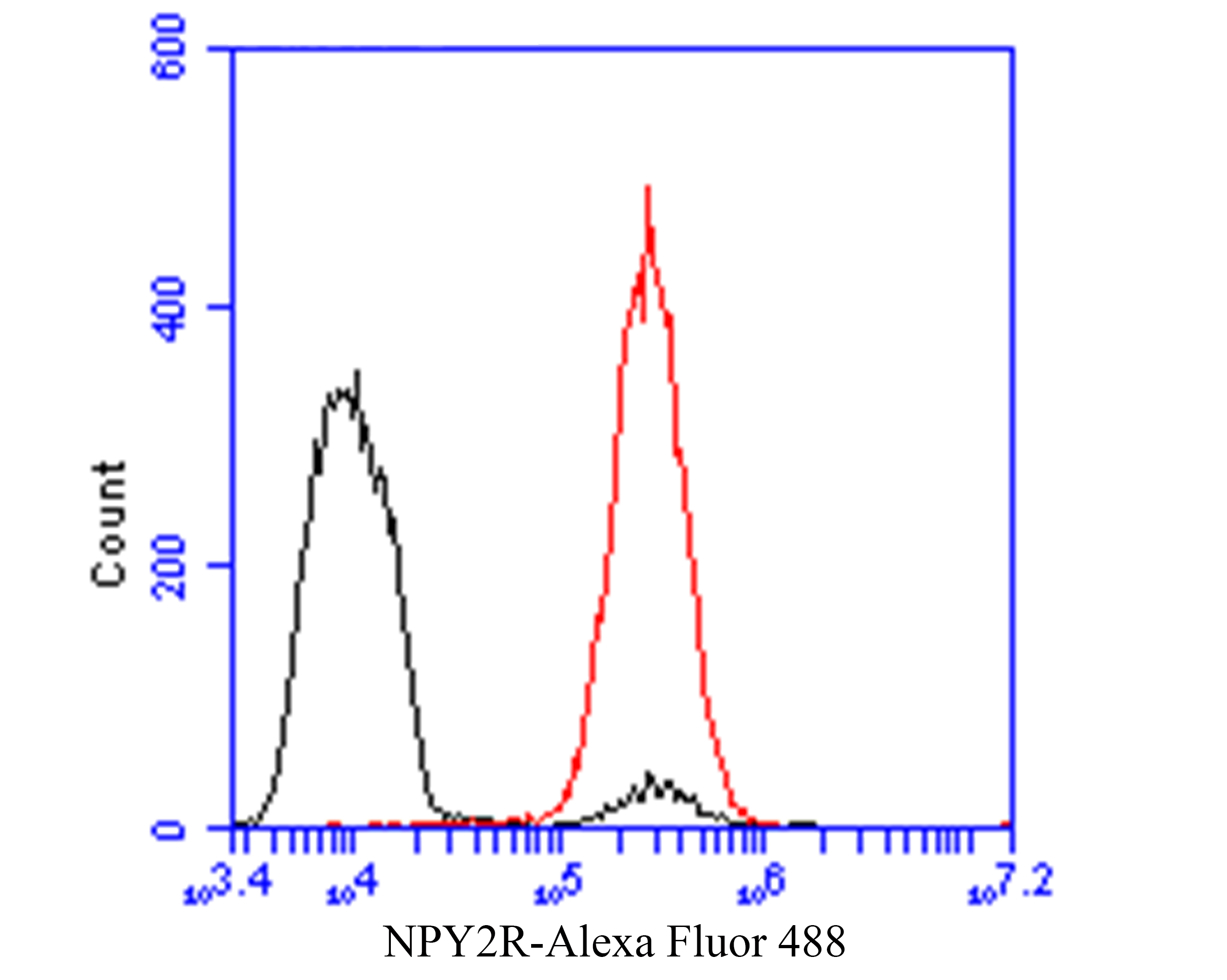 Flow cytometric analysis of NPY2R / Y2 receptor was done on MCF-7 cells. The cells were fixed, permeabilized and stained with the primary antibody (ER1901-14, 1/50) (red). After incubation of the primary antibody at room temperature for an hour, the cells were stained with a Alexa Fluor 488-conjugated Goat anti-Rabbit IgG Secondary antibody at 1/1000 dilution for 30 minutes.Unlabelled sample was used as a control (cells without incubation with primary antibody; black).