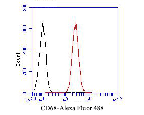 Flow cytometric analysis of CD68 was done on A549 cells. The cells were fixed, permeabilized and stained with the primary antibody (ER1901-32, 1/50) (red). After incubation of the primary antibody at room temperature for an hour, the cells were stained with a Alexa Fluor 488-conjugated Goat anti-Rabbit IgG Secondary antibody at 1/1000 dilution for 30 minutes.Unlabelled sample was used as a control (cells without incubation with primary antibody; black).