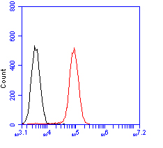 Flow cytometric analysis of CD133 was done on F9 cells. The cells were fixed, permeabilized and stained with the primary antibody (ER1901-63, 1/100) (red). After incubation of the primary antibody at room temperature for an hour, the cells were stained with a Alexa Fluor 488-conjugated goat anti-rabbit IgG Secondary antibody at 1/500 dilution for 30 minutes.Unlabelled sample was used as a control (cells without incubation with primary antibody; black).