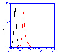 Flow cytometric analysis of BCL-6 was done on Jurkat cells. The cells were fixed, permeabilized and stained with the primary antibody (ER1901-74, 1/100) (red). After incubation of the primary antibody at room temperature for an hour, the cells were stained with a Alexa Fluor 488-conjugated goat anti-rabbit IgG Secondary antibody at 1/500 dilution for 30 minutes.Unlabelled sample was used as a control (cells without incubation with primary antibody; blcak).