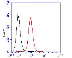 Flow cytometric analysis of Cytokertin 20 was done on JAR cells. The cells were fixed, permeabilized and stained with the primary antibody (ER1901-76, 1/100) (red). After incubation of the primary antibody at room temperature for an hour, the cells were stained with a Alexa Fluor 488-conjugated goat anti-rabbit IgG Secondary antibody at 1/500 dilution for 30 minutes.Unlabelled sample was used as a control (cells without incubation with primary antibody; blcak).