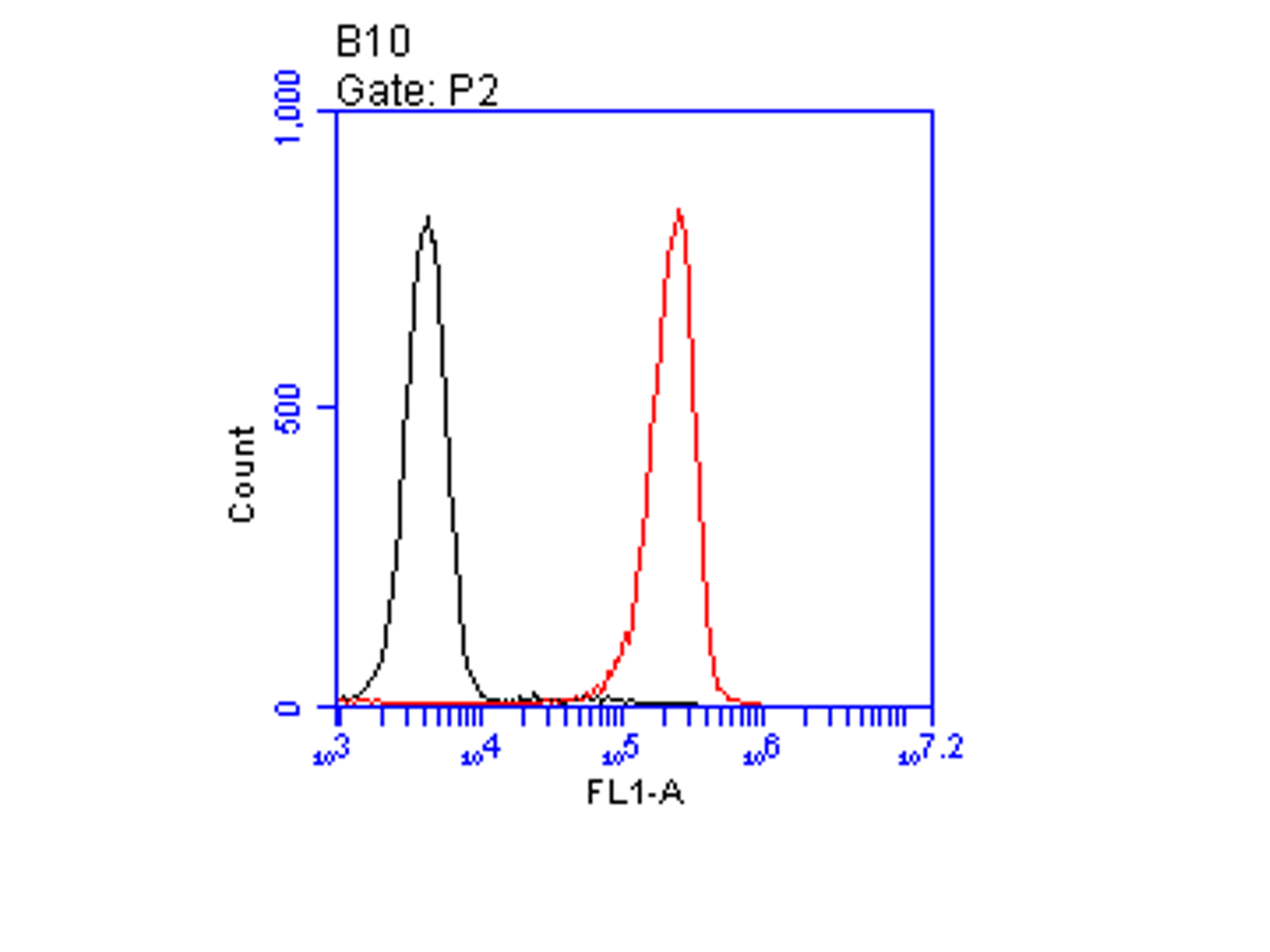 Flow cytometric analysis of CD35 was done on HL-60 cells. The cells were fixed, permeabilized and stained with the primary antibody (ER1901-82, 1/100) (red). After incubation of the primary antibody at room temperature for an hour, the cells were stained with a Alexa Fluor 488-conjugated goat anti-rabbit IgG Secondary antibody at 1/500 dilution for 30 minutes.Unlabelled sample was used as a control (cells without incubation with primary antibody; black).