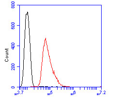 Flow cytometric analysis of B3GAT1 was done on SHSY5Y cells. The cells were fixed, permeabilized and stained with the primary antibody (ER1901-83, 1/100) (red). After incubation of the primary antibody at room temperature for an hour, the cells were stained with a Alexa Fluor 488-conjugated goat anti-rabbit IgG Secondary antibody at 1/500 dilution for 30 minutes.Unlabelled sample was used as a control (cells without incubation with primary antibody; blcak).