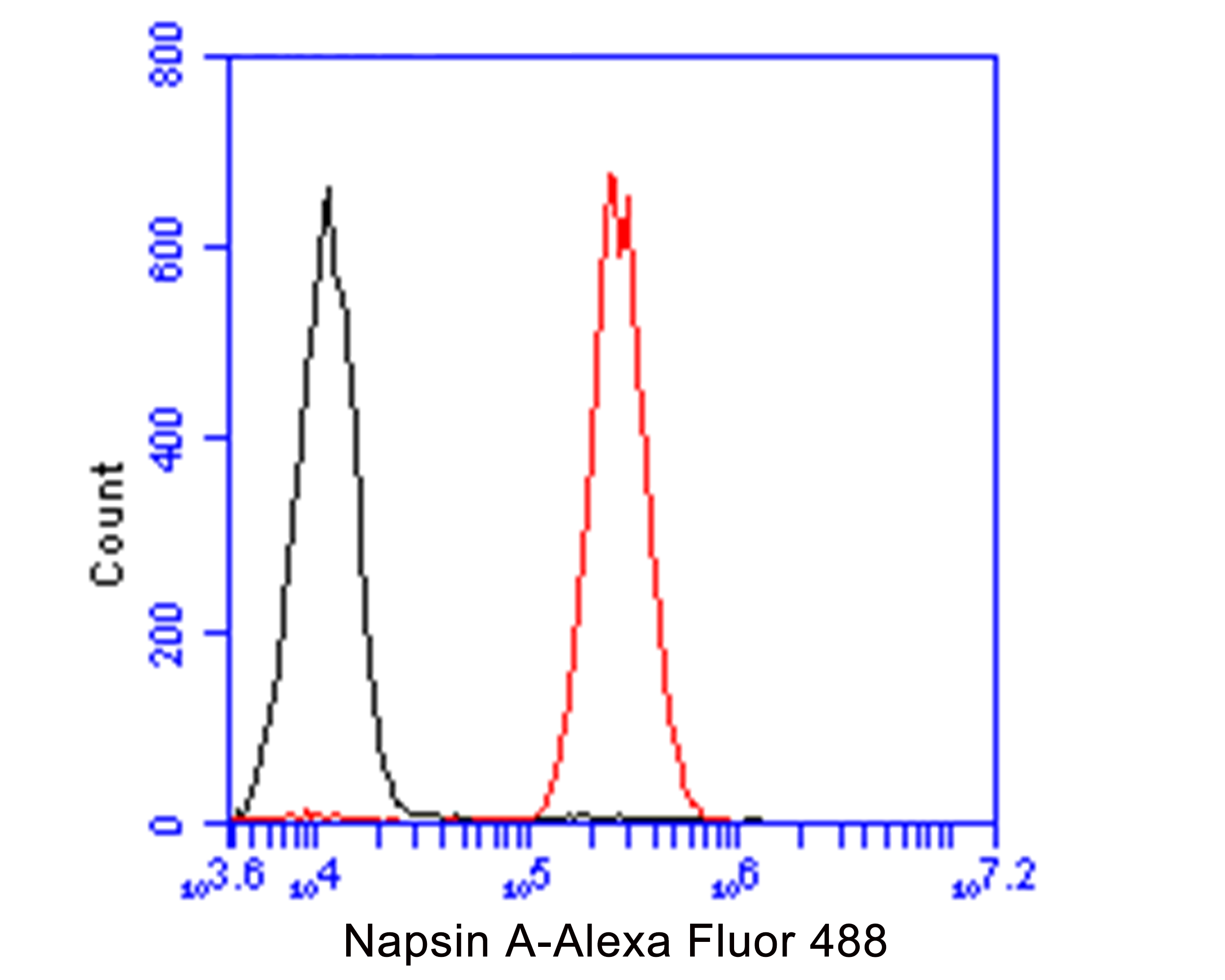 Flow cytometric analysis of NAPSIN A was done on A549 cells. The cells were fixed, permeabilized and stained with the primary antibody (ER1901-84, 1/100) (red). After incubation of the primary antibody at room temperature for an hour, the cells were stained with a Alexa Fluor 488-conjugated goat anti-rabbit IgG Secondary antibody at 1/500 dilution for 30 minutes.Unlabelled sample was used as a control (cells without incubation with primary antibody; black).