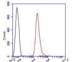 Flow cytometric analysis of delta 1 Catenin/CAS was done on Siha cells. The cells were fixed, permeabilized and stained with the primary antibody (ER1901-92, 1/100) (red). After incubation of the primary antibody at room temperature for an hour, the cells were stained with a Alexa Fluor 488-conjugated goat anti-rabbit IgG Secondary antibody at 1/500 dilution for 30 minutes.Unlabelled sample was used as a control (cells without incubation with primary antibody; black).