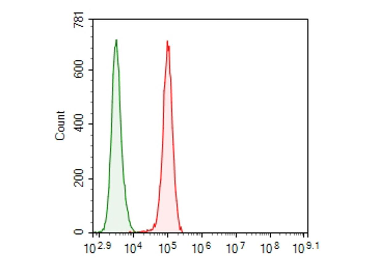 Flow cytometric analysis of ITCH was done on LOVO cells. The cells were fixed, permeabilized and stained with the primary antibody (ER1901-94, 1/100) (red). After incubation of the primary antibody at room temperature for an hour, the cells were stained with a Alexa Fluor 488-conjugated goat anti-rabbit IgG Secondary antibody at 1/500 dilution for 30 minutes.Unlabelled sample was used as a control (cells without incubation with primary antibody; green).
