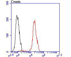 Flow cytometric analysis of Progesterone receptor was done on MCF-7 cells. The cells were fixed, permeabilized and stained with the primary antibody (ER1901-96, 1/100) (red). After incubation of the primary antibody at room temperature for an hour, the cells were stained with a Alexa Fluor 488-conjugated goat anti-rabbit IgG Secondary antibody at 1/500 dilution for 30 minutes.Unlabelled sample was used as a control (cells without incubation with primary antibody; black).