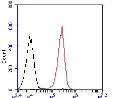 Flow cytometric analysis of P2X7 was done on THP-1 cells. The cells were fixed, permeabilized and stained with the primary antibody (ER1901-99, 1/100) (red). After incubation of the primary antibody at room temperature for an hour, the cells were stained with a Alexa Fluor 488-conjugated goat anti-rabbit IgG Secondary antibody at 1/500 dilution for 30 minutes.Unlabelled sample was used as a control (cells without incubation with primary antibody; blcak).
