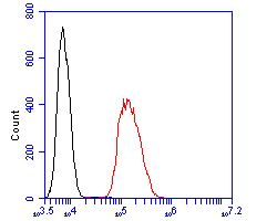 Flow cytometric analysis of DPP6 was done on SHSY5Y cells. The cells were fixed, permeabilized and stained with the primary antibody (ER1902-07, 1/100) (red). After incubation of the primary antibody at room temperature for an hour, the cells were stained with a Alexa Fluor 488-conjugated goat anti-rabbit IgG Secondary antibody at 1/500 dilution for 30 minutes.Unlabelled sample was used as a control (cells without incubation with primary antibody; blcak).