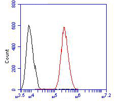 Flow cytometric analysis of CD163 was done on HCT116 cells. The cells were fixed, permeabilized and stained with the primary antibody (ER1902-09, 1/100) (red). After incubation of the primary antibody at room temperature for an hour, the cells were stained with a Alexa Fluor 488-conjugated goat anti-rabbit IgG Secondary antibody at 1/500 dilution for 30 minutes.Unlabelled sample was used as a control (cells without incubation with primary antibody; blcak).