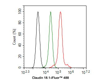 Flow cytometric analysis of Claudin 18.1 was done on F9 cells. The cells were fixed, permeabilized and stained with the primary antibody (ER1902-11, 1/50) (red). After incubation of the primary antibody at room temperature for an hour, the cells were stained with a Alexa Fluor 488-conjugated Goat anti-Rabbit IgG Secondary antibody at 1/1000 dilution for 30 minutes.Unlabelled sample was used as a control (cells without incubation with primary antibody; black).