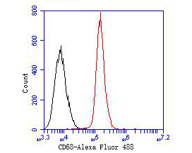 Flow cytometric analysis of CD68 was done on SiHa cells. The cells were fixed, permeabilized and stained with the primary antibody (ER1902-21, 1/50) (red). After incubation of the primary antibody at room temperature for an hour, the cells were stained with a Alexa Fluor 488-conjugated Goat anti-Rabbit IgG Secondary antibody at 1/1000 dilution for 30 minutes.Unlabelled sample was used as a control (cells without incubation with primary antibody; black).