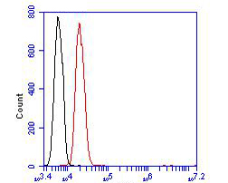Flow cytometric analysis of PPAR delta was done on SHSY5Y cells. The cells were fixed, permeabilized and stained with the primary antibody (ER1902-24, 1/100) (red). After incubation of the primary antibody at room temperature for an hour, the cells were stained with a Alexa Fluor 488-conjugated goat anti-rabbit IgG Secondary antibody at 1/500 dilution for 30 minutes.Unlabelled sample was used as a control (cells without incubation with primary antibody; blcak).