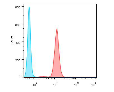 Flow cytometric analysis of IL17A was done on Jurkat cells. The cells were fixed, permeabilized and stained with the primary antibody (ER1902-37, 1/100) (red). After incubation of the primary antibody at room temperature for an hour, the cells were stained with a Alexa Fluor 488-conjugated goat anti-rabbit IgG Secondary antibody at 1/500 dilution for 30 minutes.Unlabelled sample was used as a control (cells without incubation with primary antibody; blue).