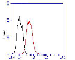 Flow cytometric analysis of Kv1.4 was done on MCF-7 cells. The cells were fixed, permeabilized and stained with the primary antibody (ER1902-49, 1/100) (red). After incubation of the primary antibody at room temperature for an hour, the cells were stained with a Alexa Fluor 488-conjugated goat anti-rabbit IgG Secondary antibody at 1/500 dilution for 30 minutes.Unlabelled sample was used as a control (cells without incubation with primary antibody; blcak).
