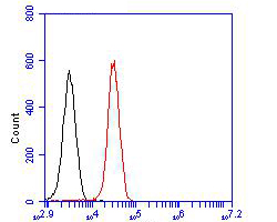 Flow cytometric analysis of NHE-1 was done on 293T cells. The cells were fixed, permeabilized and stained with the primary antibody (ER1902-51, 1/100) (red). After incubation of the primary antibody at room temperature for an hour, the cells were stained with a Alexa Fluor 488-conjugated goat anti-rabbit IgG Secondary antibody at 1/500 dilution for 30 minutes.Unlabelled sample was used as a control (cells without incubation with primary antibody; blcak).