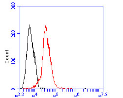 Flow cytometric analysis of Perilipin-5 was done on JAR cells. The cells were fixed, permeabilized and stained with the primary antibody (ER1902-53, 1/100) (red). After incubation of the primary antibody at room temperature for an hour, the cells were stained with a Alexa Fluor 488-conjugated goat anti-rabbit IgG Secondary antibody at 1/500 dilution for 30 minutes.Unlabelled sample was used as a control (cells without incubation with primary antibody; blcak).