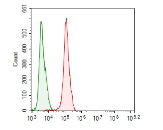 Flow cytometric analysis of CEACAM6 was done on MCF-7 cells. The cells were fixed, permeabilized and stained with the primary antibody (ER1902-54, 1/100) (red). After incubation of the primary antibody at room temperature for an hour, the cells were stained with a Alexa Fluor 488-conjugated goat anti-rabbit IgG Secondary antibody at 1/500 dilution for 30 minutes.Unlabelled sample was used as a control (cells without incubation with primary antibody; blcak).