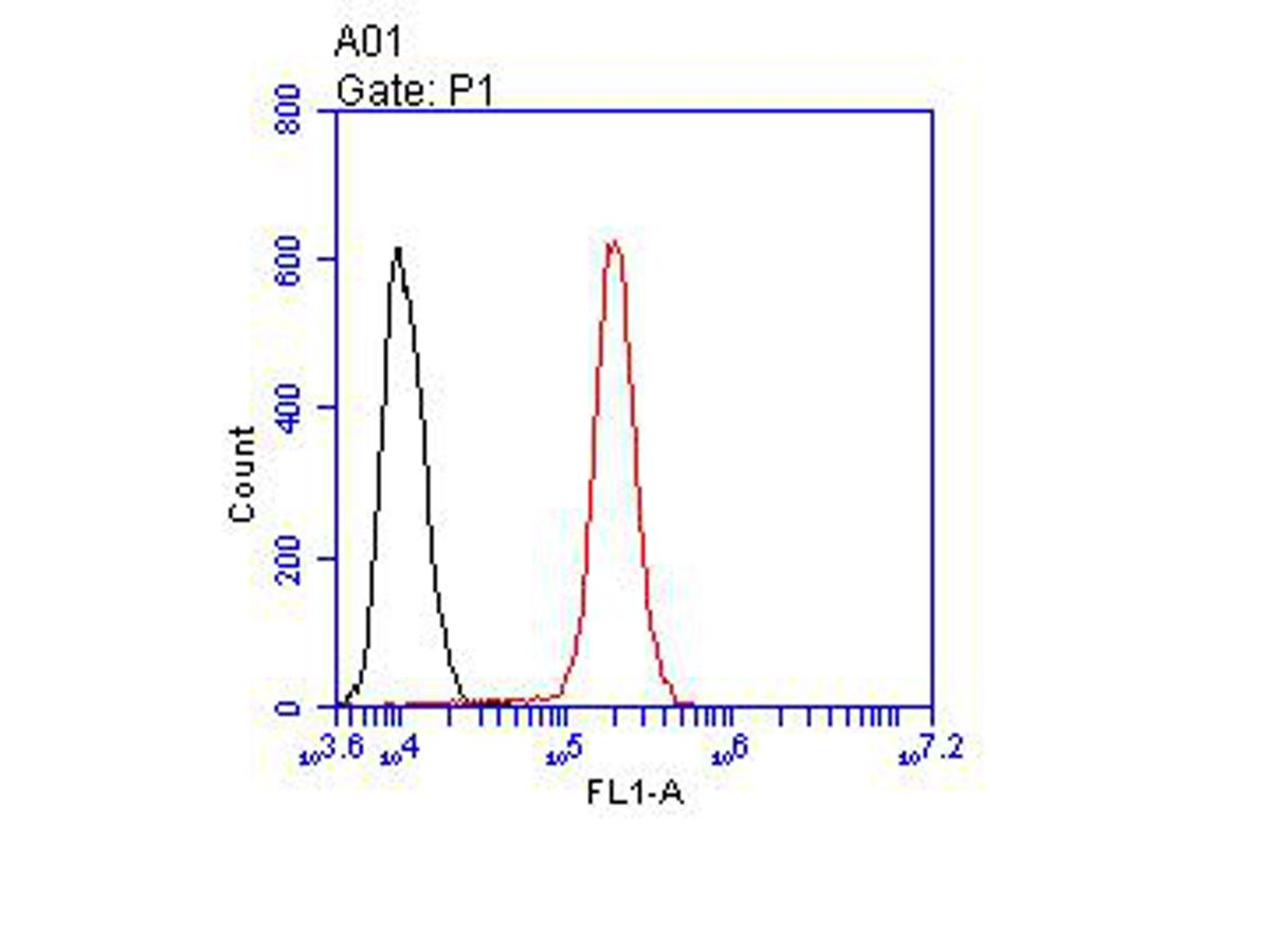 Flow cytometric analysis of CD95 was done on A431 cells. The cells were fixed, permeabilized and stained with the primary antibody (ER1902-56, 1/100) (red). After incubation of the primary antibody at room temperature for an hour, the cells were stained with a Alexa Fluor 488-conjugated goat anti-rabbit IgG Secondary antibody at 1/500 dilution for 30 minutes.Unlabelled sample was used as a control (cells without incubation with primary antibody; black).