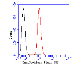 Flow cytometric analysis of DNMT3A was done on SH-SY5Y cells. The cells were fixed, permeabilized and stained with the primary antibody (ER1902-62, 1/50) (red). After incubation of the primary antibody at room temperature for an hour, the cells were stained with a Alexa Fluor 488-conjugated Goat anti-Rabbit IgG Secondary antibody at 1/1000 dilution for 30 minutes.Unlabelled sample was used as a control (cells without incubation with primary antibody; black).