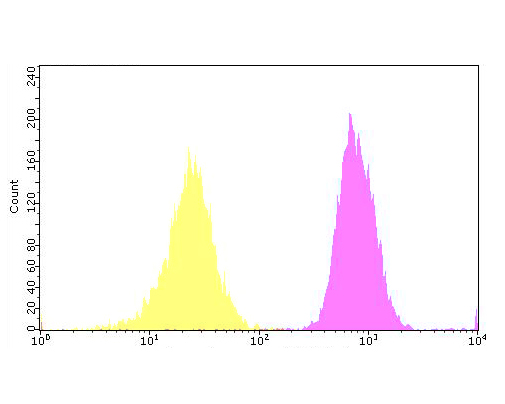 Flow cytometric analysis of GAL4 was done on SHSY5Y cells. The cells were fixed, permeabilized and stained with the primary antibody (ER1902-63, 1/100) (purple). After incubation of the primary antibody at room temperature for an hour, the cells were stained with a Alexa Fluor 488-conjugated goat anti-rabbit IgG Secondary antibody at 1/500 dilution for 30 minutes. Unlabelled sample was used as a control (cells without incubation with primary antibody; yellow).