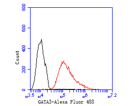 Flow cytometric analysis of GATA3 was done on MCF-7 cells. The cells were fixed, permeabilized and stained with the primary antibody (ER1902-69, 1/50) (red). After incubation of the primary antibody at room temperature for an hour, the cells were stained with a Alexa Fluor 488-conjugated Goat anti-Rabbit IgG Secondary antibody at 1/1000 dilution for 30 minutes.Unlabelled sample was used as a control (cells without incubation with primary antibody; black).
