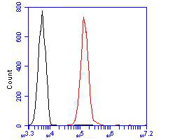 Flow cytometric analysis of TRF2 was done on Siha cells. The cells were fixed, permeabilized and stained with the primary antibody (ER1902-70, 1/100) (red). After incubation of the primary antibody at room temperature for an hour, the cells were stained with a Alexa Fluor 488-conjugated goat anti-rabbit IgG Secondary antibody at 1/500 dilution for 30 minutes.Unlabelled sample was used as a control (cells without incubation with primary antibody; blcak).