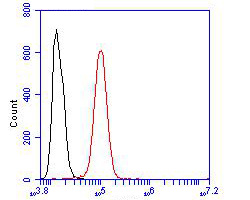 Flow cytometric analysis of CDK5RAP3 was done on SHSY5Y cells. The cells were fixed, permeabilized and stained with the primary antibody (ER1902-72, 1/100) (red). After incubation of the primary antibody at room temperature for an hour, the cells were stained with a Alexa Fluor 488-conjugated goat anti-rabbit IgG Secondary antibody at 1/500 dilution for 30 minutes.Unlabelled sample was used as a control (cells without incubation with primary antibody; blcak).