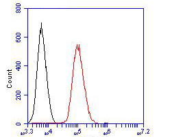 Flow cytometric analysis of CD1a was done on 293 cells. The cells were fixed, permeabilized and stained with the primary antibody (ER1902-73, 1/100) (red). After incubation of the primary antibody at room temperature for an hour, the cells were stained with a Alexa Fluor 488-conjugated goat anti-rabbit IgG Secondary antibody at 1/500 dilution for 30 minutes.Unlabelled sample was used as a control (cells without incubation with primary antibody; black).