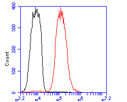 Flow cytometric analysis of LIM1 was done on MCF-7 cells. The cells were fixed, permeabilized and stained with the primary antibody (ER1902-83, 1/100) (red). After incubation of the primary antibody at room temperature for an hour, the cells were stained with a Alexa Fluor 488-conjugated goat anti-rabbit IgG Secondary antibody at 1/500 dilution for 30 minutes.Unlabelled sample was used as a control (cells without incubation with primary antibody; blcak).