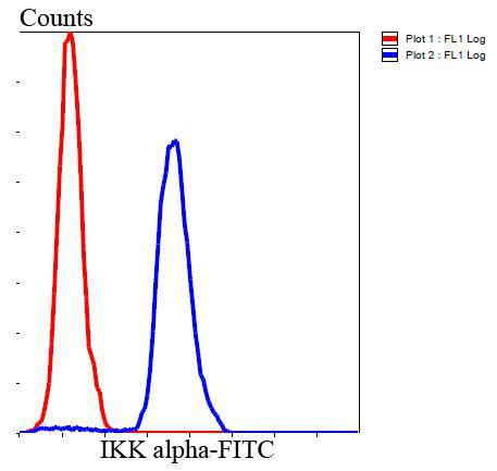 Flow cytometric analysis of Hela cells with IKK alpha antibody at 1/100 dilution (blue) compared with an unlabelled control (cells without incubation with primary antibody; red). Goat anti rabbit IgG (FITC) was used as the secondary antibody.