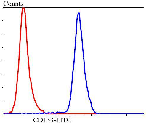 Flow cytometric analysis of SHG-44 cells with CD133 antibody at 1/100 dilution (blue) compared with an unlabelled control (cells without incubation with primary antibody; red). Goat anti rabbit IgG (FITC) was used as the secondary antibody.