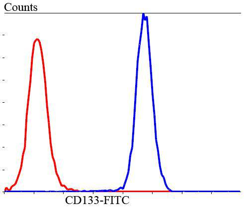 Flow cytometric analysis of HUVEC cells with CD133 antibody at 1/100 dilution (blue) compared with an unlabelled control (cells without incubation with primary antibody; red). Goat anti rabbit IgG (FITC) was used as the secondary antibody.
