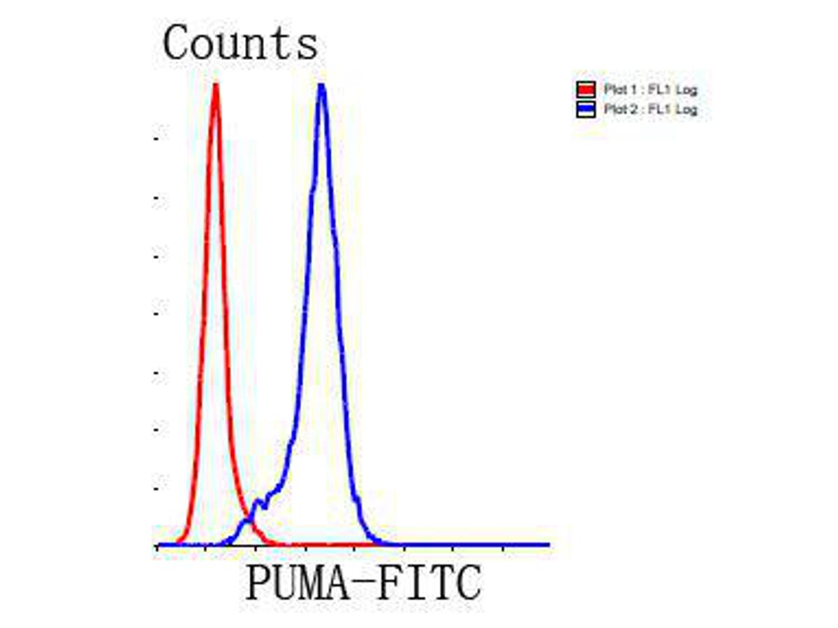 Flow cytometric analysis of Jurkat cells with PUMA antibody at 1/100 dilution (blue) compared with an unlabelled control (cells without incubation with primary antibody; red). Goat anti rabbit IgG (FITC) was used as the secondary antibody.