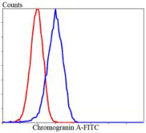 Flow cytometric analysis of Lovo cells with chromogranin A antibody at 1/100 dilution (blue) compared with an unlabelled control (cells without incubation with primary antibody; red). Goat anti rabbit IgG (FITC) was used as the secondary antibody.