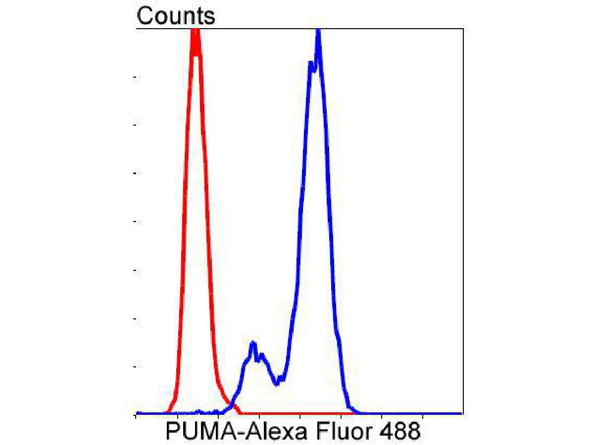 Flow cytometric analysis of PUMA was done on Hela cells. The cells were fixed, permeabilized and stained with the primary antibody (ET1602-24, 1/50) (blue). After incubation of the primary antibody at room temperature for an hour, the cells were stained with a Alexa Fluor 488-conjugated Goat anti-Rabbit IgG Secondary antibody at 1/1000 dilution for 30 minutes.Unlabelled sample was used as a control (cells without incubation with primary antibody; red).