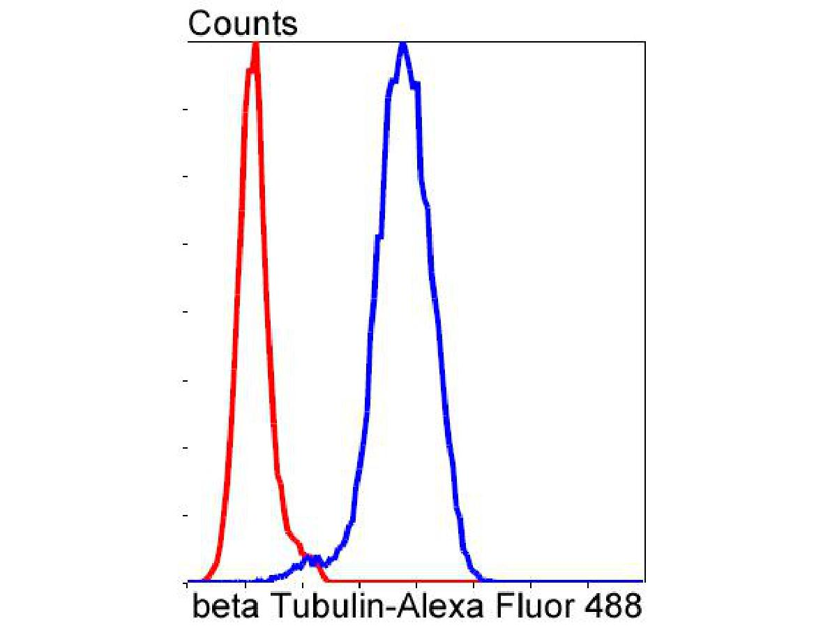 Flow cytometric analysis of beta Tubulin was done on NIH/3T3 cells. The cells were fixed, permeabilized and stained with the primary antibody (ET1602-4, 1/50) (blue). After incubation of the primary antibody at room temperature for an hour, the cells were stained with a Alexa Fluor 488-conjugated Goat anti-Rabbit IgG Secondary antibody at 1/1000 dilution for 30 minutes.Unlabelled sample was used as a control (cells without incubation with primary antibody; red).