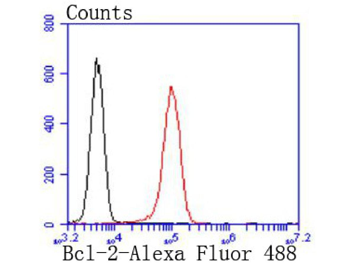 Flow cytometric analysis of Bcl-2 was done on Jurkat cells. The cells were fixed, permeabilized and stained with the primary antibody (ET1603-11, 1/50) (red). After incubation of the primary antibody at room temperature for an hour, the cells were stained with a Alexa Fluor 488-conjugated Goat anti-Rabbit IgG Secondary antibody at 1/1000 dilution for 30 minutes.Unlabelled sample was used as a control (cells without incubation with primary antibody; black).