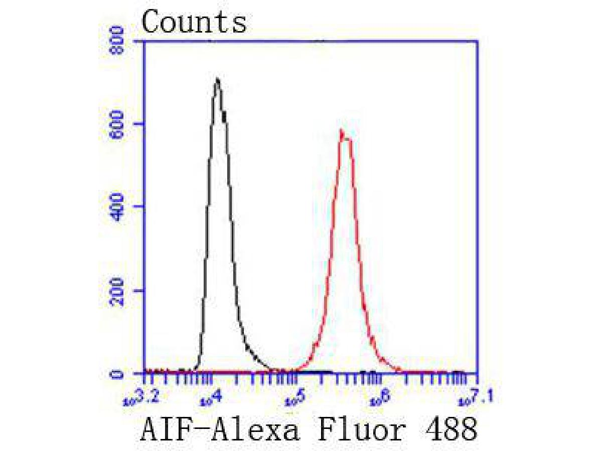 Flow cytometric analysis of AIF was done on Hela cells. The cells were fixed, permeabilized and stained with the primary antibody (ET1603-4, 1/50) (red). After incubation of the primary antibody at room temperature for an hour, the cells were stained with a Alexa Fluor 488-conjugated Goat anti-Rabbit IgG Secondary antibody at 1/1000 dilution for 30 minutes.Unlabelled sample was used as a control (cells without incubation with primary antibody; black).