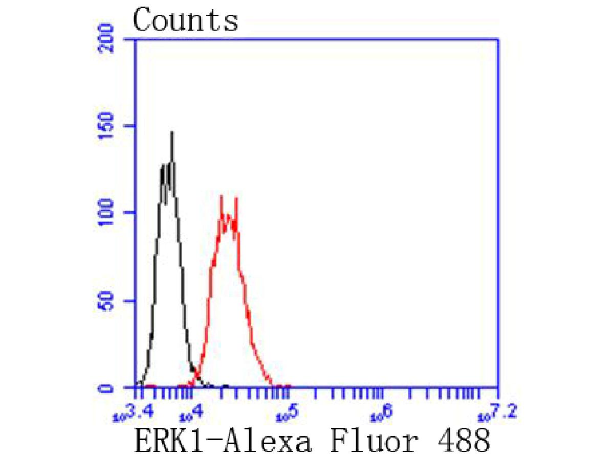 Flow cytometric analysis of Jurkat cells with ERK1 antibody at 1/50 dilution (red) compared with an unlabelled control (cells without incubation with primary antibody; black). Alexa Fluor 488-conjugated goat anti rabbit IgG was used as the secondary antibody.