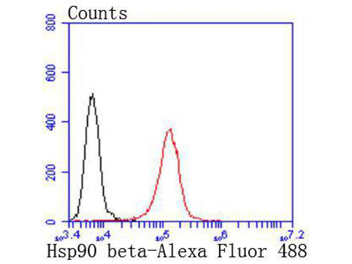 Flow cytometric analysis of Hsp90 beta was done on Jurkat cells. The cells were fixed, permeabilized and stained with the primary antibody (ET1605-56, 1/50) (red). After incubation of the primary antibody at room temperature for an hour, the cells were stained with a Alexa Fluor 488-conjugated Goat anti-Rabbit IgG Secondary antibody at 1/1000 dilution for 30 minutes.Unlabelled sample was used as a control (cells without incubation with primary antibody; black).
