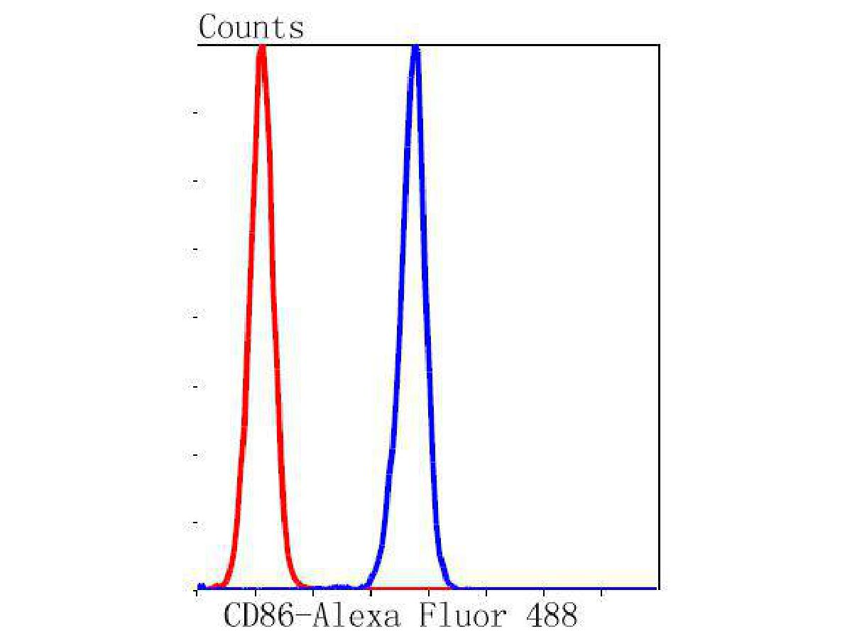 Flow cytometric analysis of CD86 was done on K562 cells. The cells were fixed, permeabilized and stained with the primary antibody (ET1606-50, 1/50) (blue). After incubation of the primary antibody at room temperature for an hour, the cells were stained with a Alexa Fluor 488-conjugated Goat anti-Rabbit IgG Secondary antibody at 1/1000 dilution for 30 minutes.Unlabelled sample was used as a control (cells without incubation with primary antibody; red).