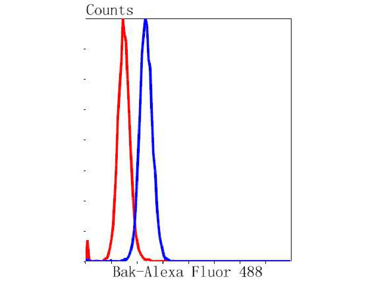 Flow cytometric analysis of Bak was done on NIH/3T3 cells. The cells were fixed, permeabilized and stained with the primary antibody (ET1608-21, 1/50) (blue). After incubation of the primary antibody at room temperature for an hour, the cells were stained with a Alexa Fluor 488-conjugated Goat anti-Rabbit IgG Secondary antibody at 1/1000 dilution for 30 minutes.Unlabelled sample was used as a control (cells without incubation with primary antibody; red).