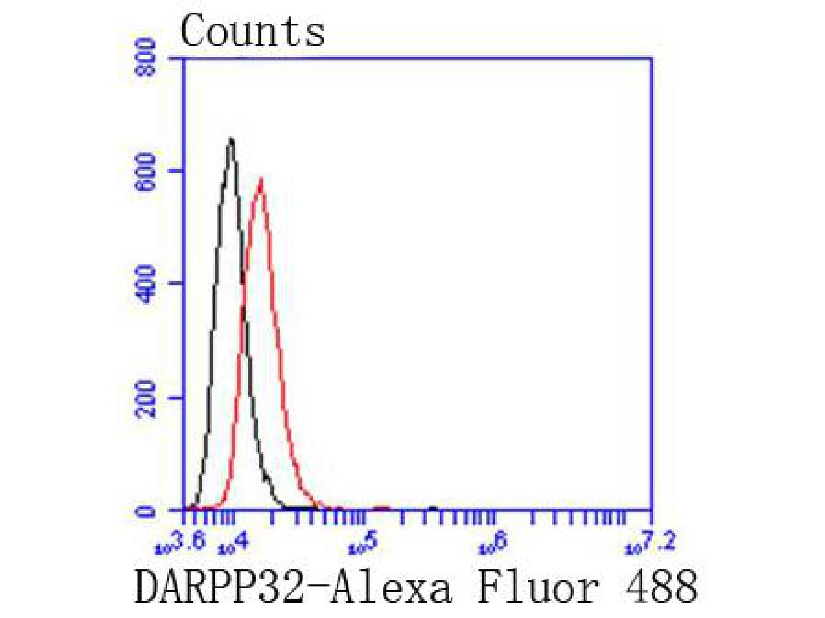 Flow cytometric analysis of Hela cells with DARPP32 antibody at 1/50 dilution (red) compared with an unlabelled control (cells without incubation with primary antibody; black). Alexa Fluor 488-conjugated goat anti rabbit IgG was used as the secondary antibody.
