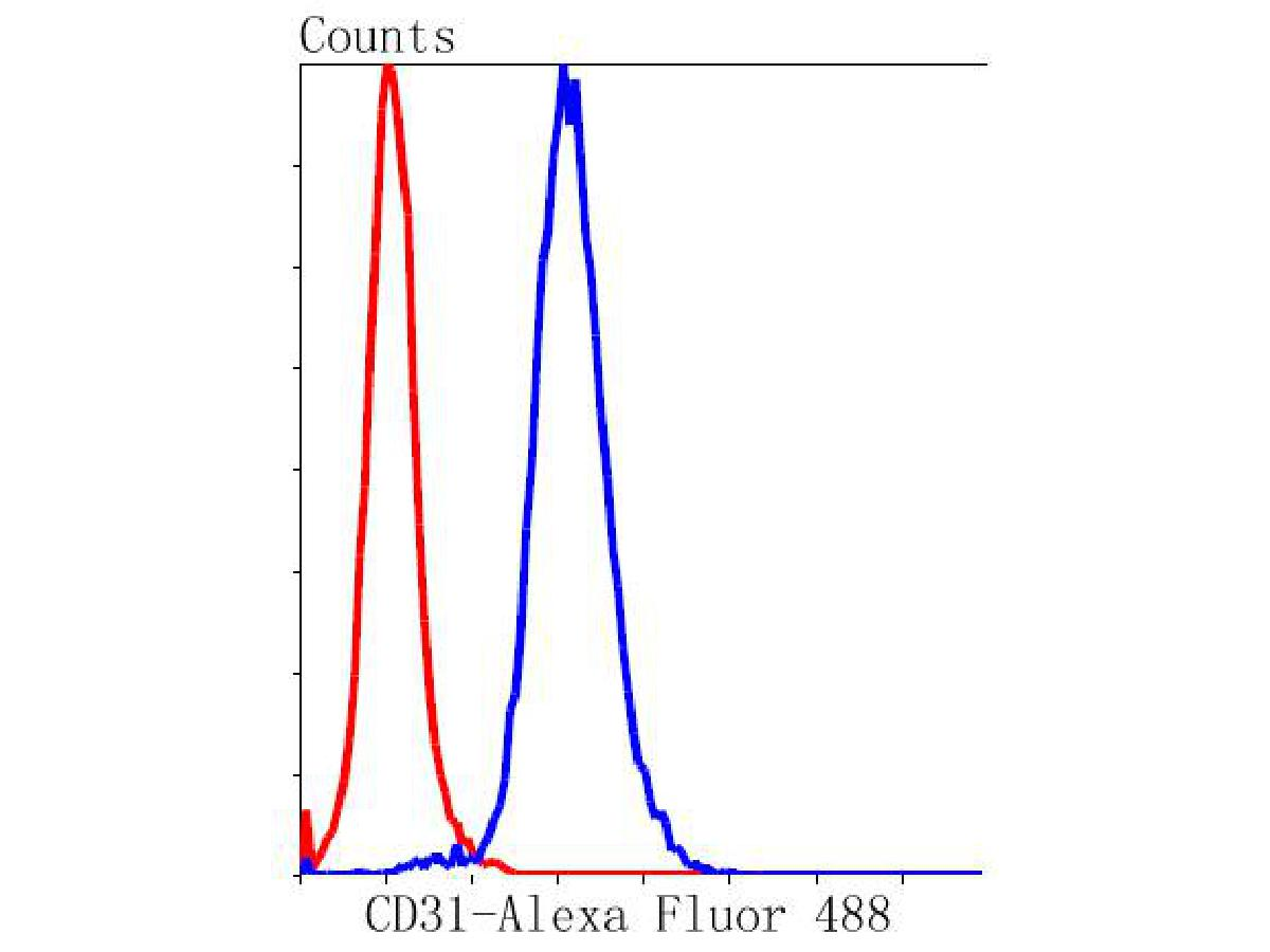Flow cytometric analysis of CD31 was done on THP-1 cells. The cells were fixed, permeabilized and stained with the primary antibody (ET1608-48, 1/50) (blue). After incubation of the primary antibody at room temperature for an hour, the cells were stained with a Alexa Fluor 488-conjugated Goat anti-Rabbit IgG Secondary antibody at 1/1000 dilution for 30 minutes.Unlabelled sample was used as a control (cells without incubation with primary antibody; red).