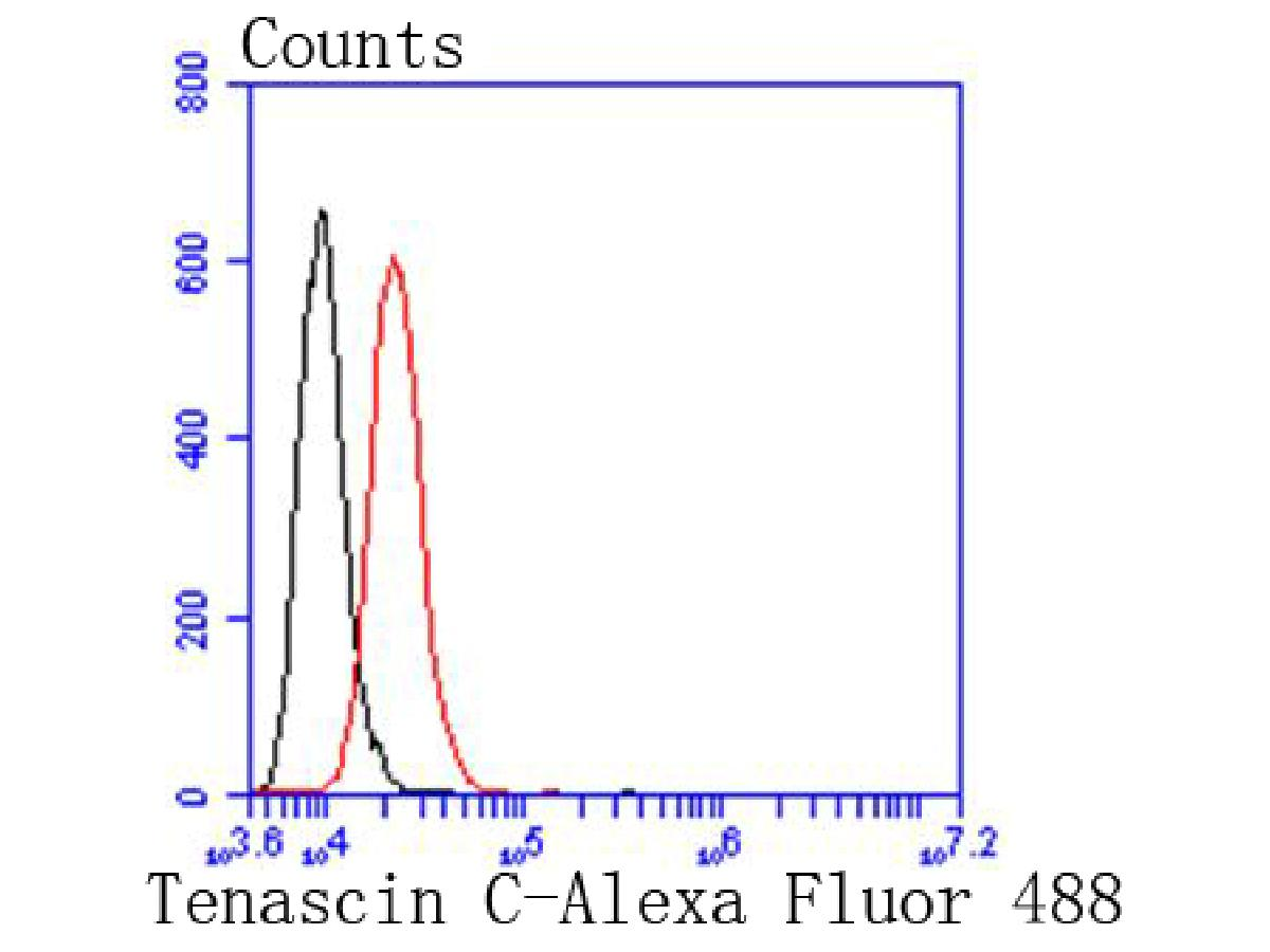 Flow cytometric analysis of Tenascin C was done on SH-SY5Y cells. The cells were fixed, permeabilized and stained with the primary antibody (ET1608-50, 1/50) (red). After incubation of the primary antibody at room temperature for an hour, the cells were stained with a Alexa Fluor 488-conjugated Goat anti-Rabbit IgG Secondary antibody at 1/1000 dilution for 30 minutes.Unlabelled sample was used as a control (cells without incubation with primary antibody; black).